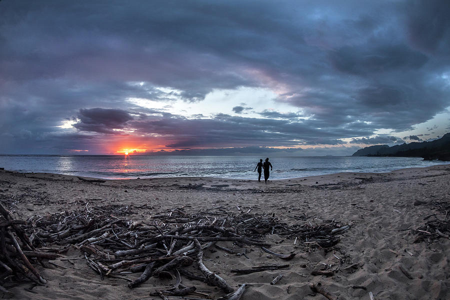 Drift Wood Photograph - Drift Wood by Sean Davey