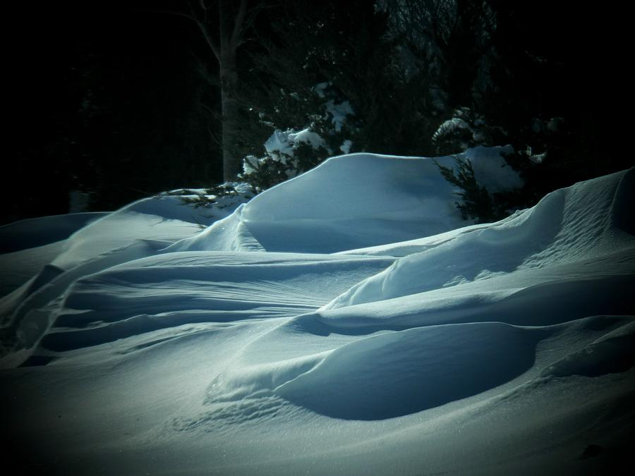 Virginia Photograph - Drifts by Joyce Kimble Smith