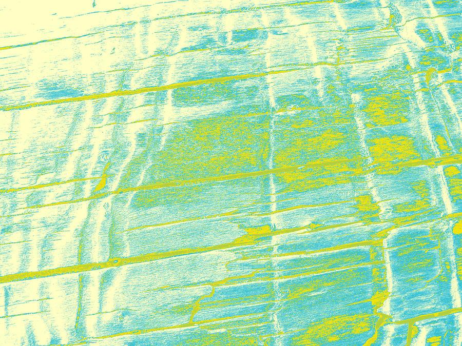 driftwood #10 by Anne Westlund