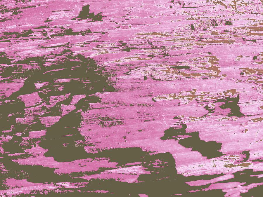 driftwood #6 by Anne Westlund