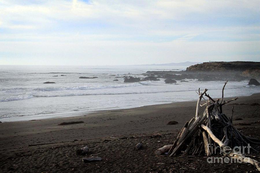 Beach Mixed Media - Driftwood And Moonstone Beach by Linda Woods