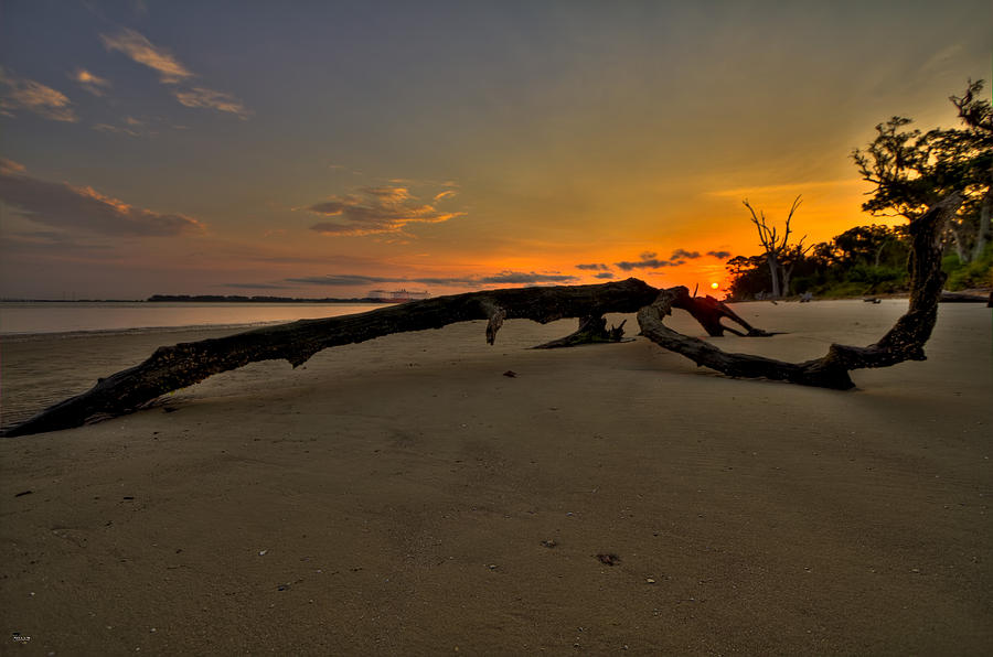 Jekyll Island Photograph - Driftwood Beach Hdr 1 by Jason Blalock