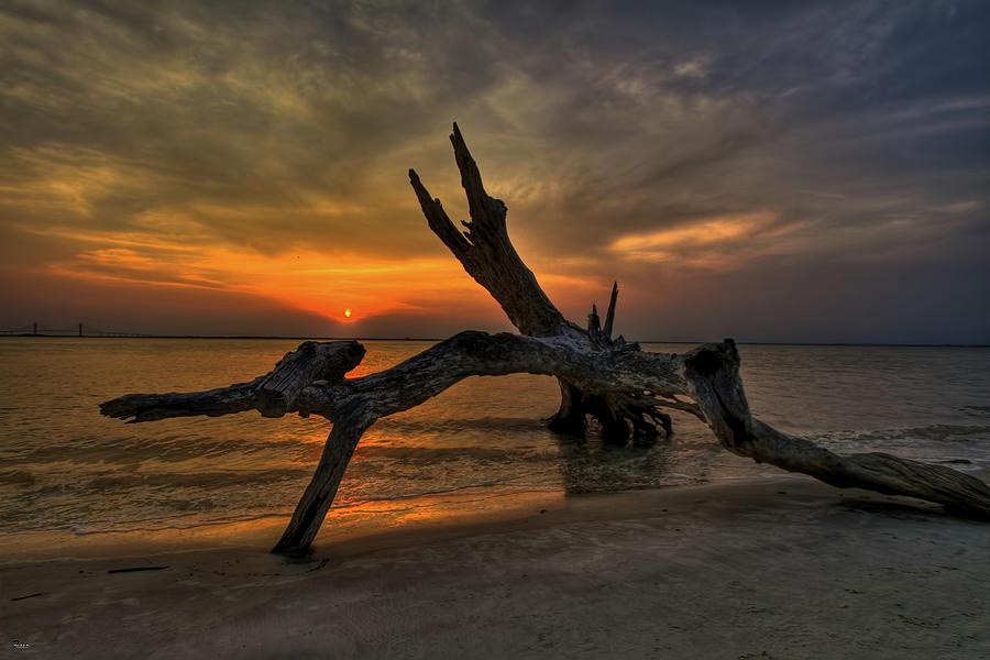Jekyll Island Photograph - Driftwood Beach Hdr 4 by Jason Blalock
