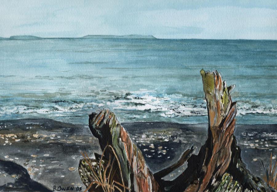 Watercolor Painting - Driftwood by Brenda Owen