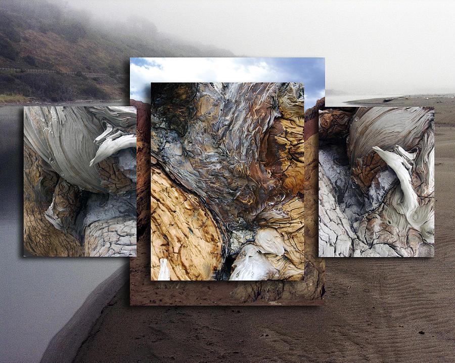 Driftwood Photograph - Driftwood Canyon Medley II by D Kadah Tanaka