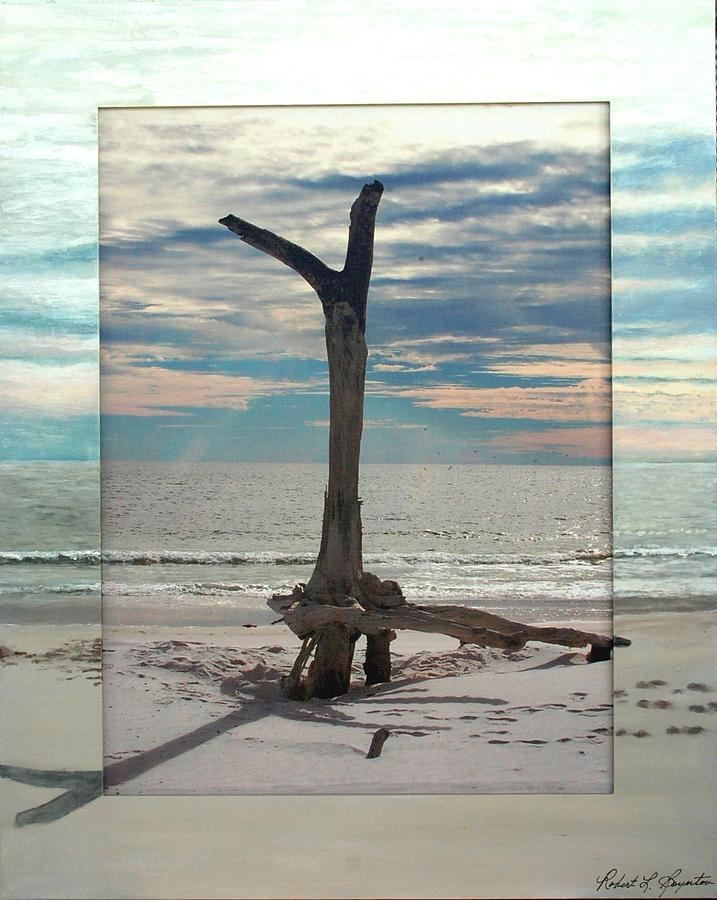 Driftwood Mixed Media - Driftwood On The Beach by Robert Boynton