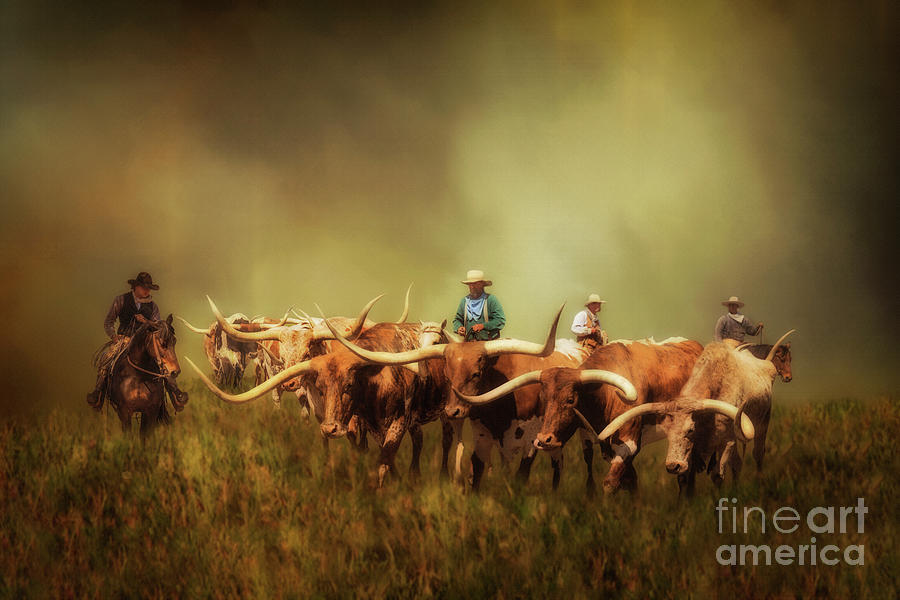 Driving The Herd Photograph
