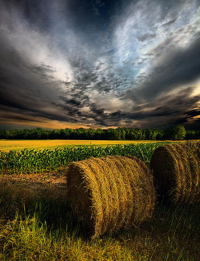 Horizons Photograph - Drought by Phil Koch