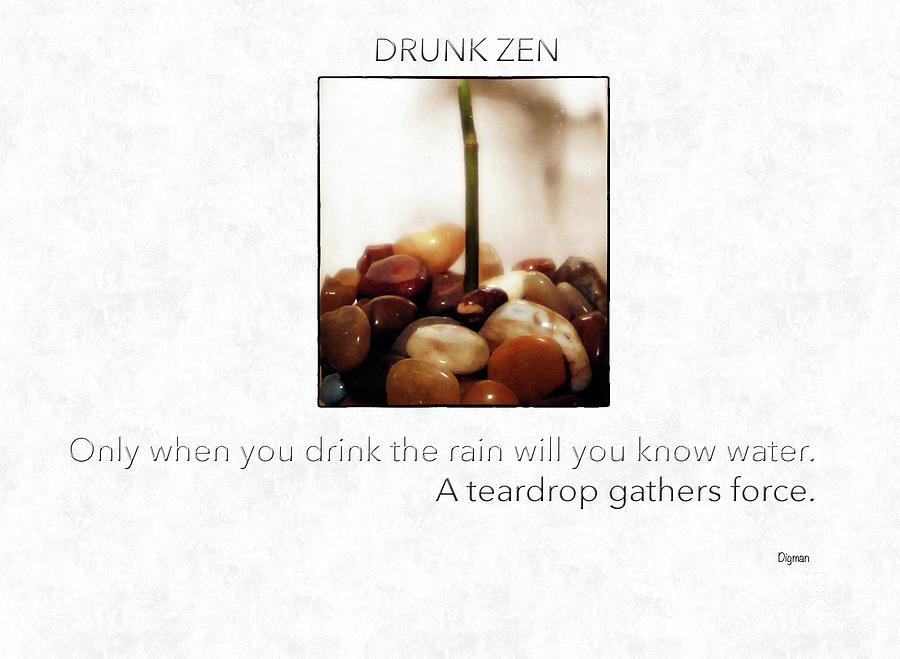 Zen Photograph - Drunk Zen  by Steven Digman