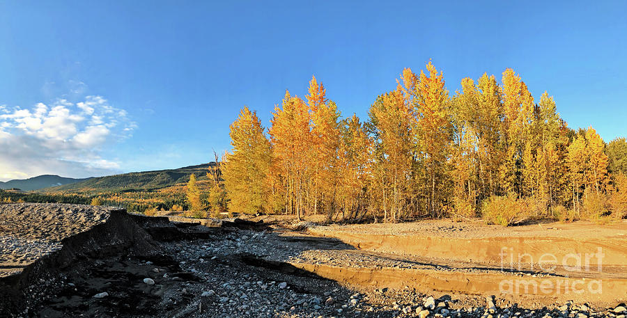 Autumn Photograph - Dry Creekbed by Victor K