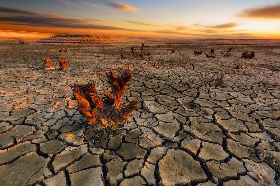 Dry Photograph - Dry Lake by Piotr Krol (bax)