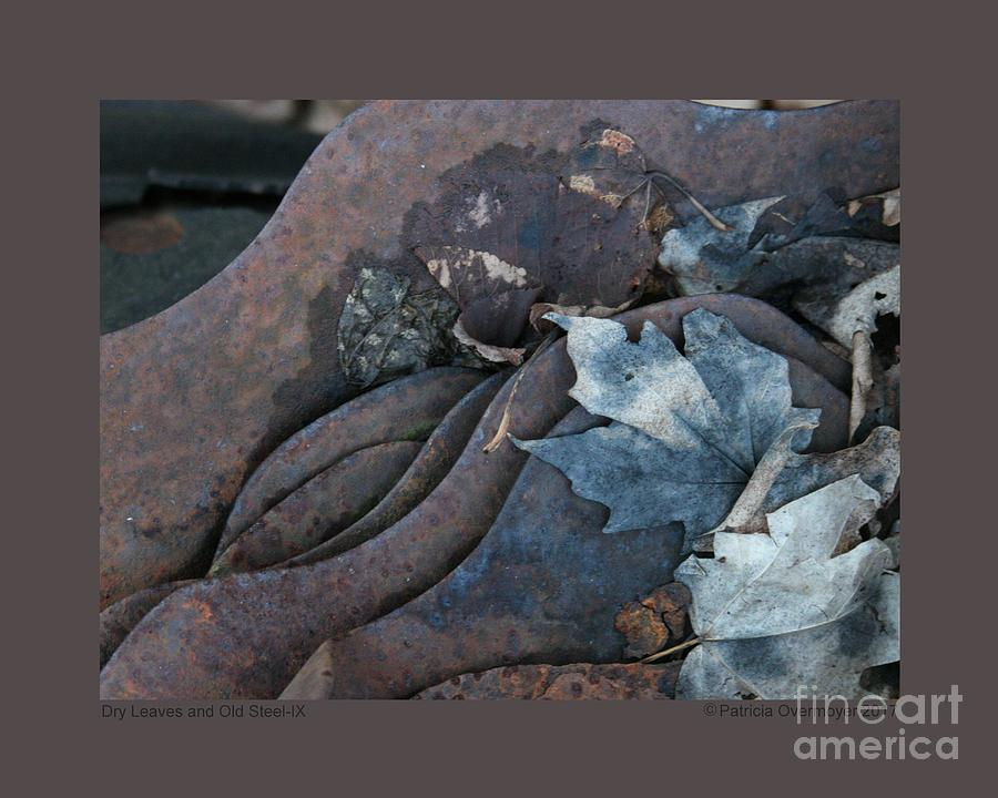 Dry Leaves and Old Steel-IX by Patricia Overmoyer