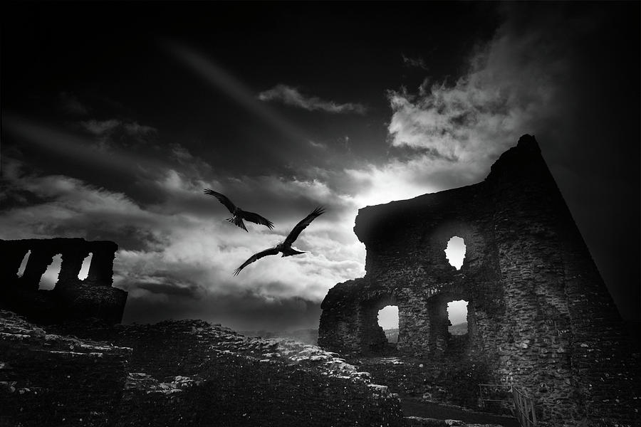 Wales Photograph - Dryslwyn Castle 3b by Phil Fitzsimmons