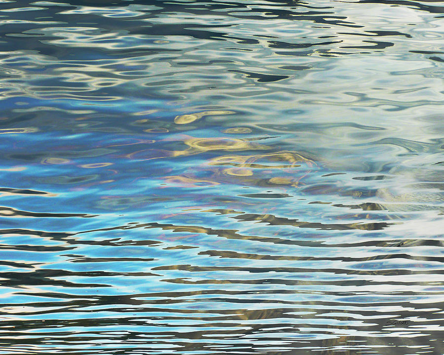 Water Photograph - Dual Reflections by Susie Gillatt
