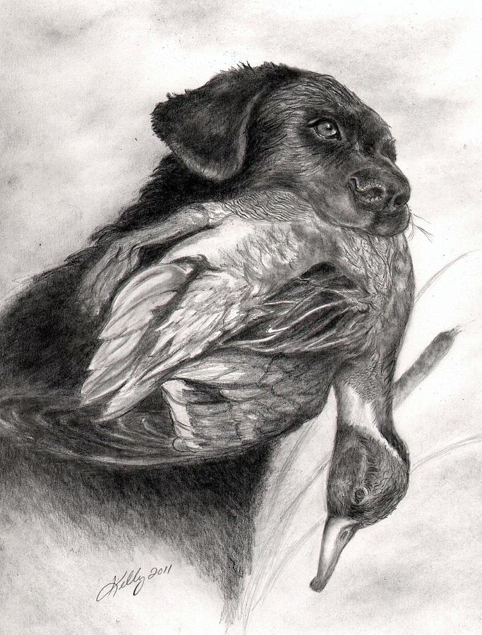 Duck Season Drawing by Kathleen Kelly Thompson