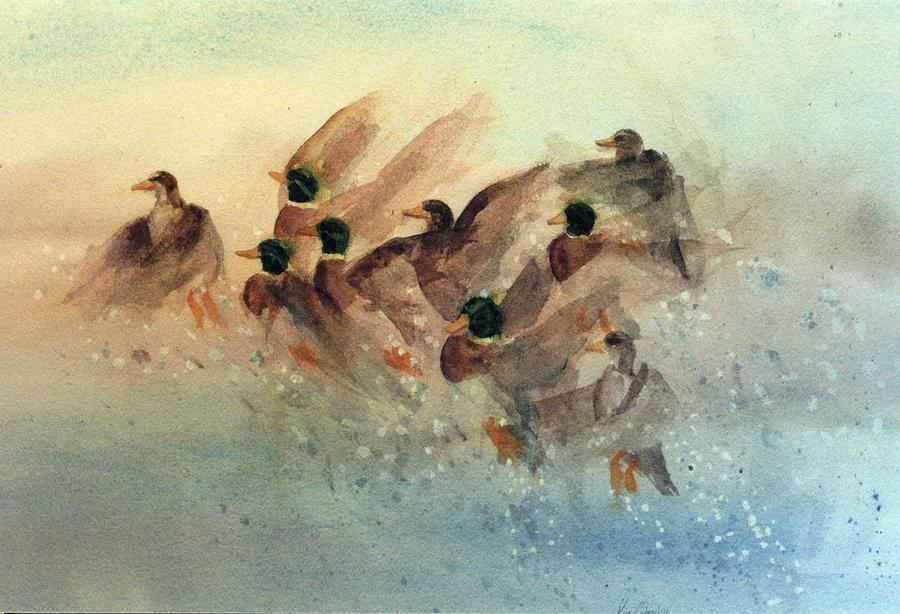 Duck Painting - Ducks Rising by Kim Corpany