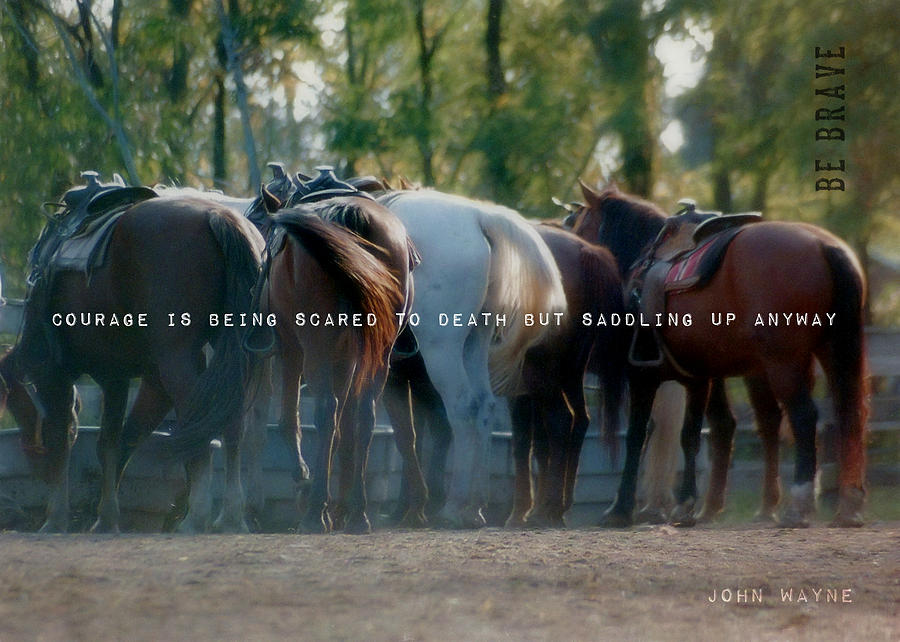 Horse Photograph - Dude Ranch Quote by JAMART Photography