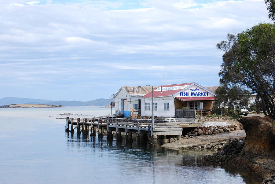 dunalley fish market tasmania photograph by karen gandy. Black Bedroom Furniture Sets. Home Design Ideas