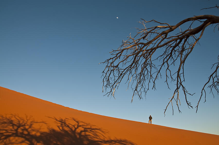 Landscape Photograph - Dune 45 by Olwen Evans