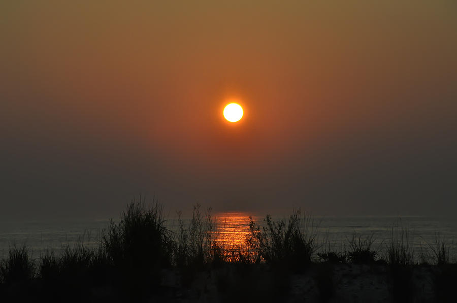Atlantic City Photograph - Dune Grass Sunrise by Bill Cannon