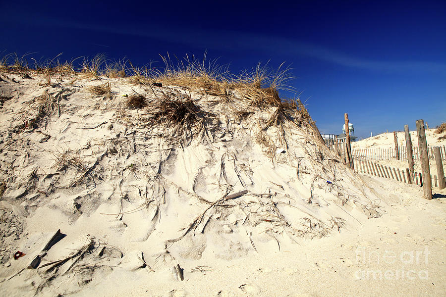Dune Photograph - Dune Heights On Long Beach Island by John Rizzuto