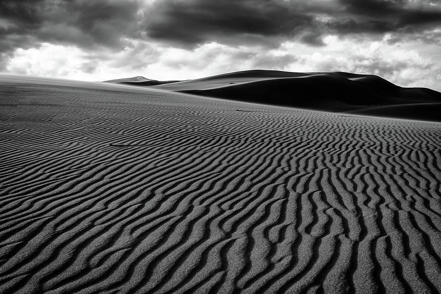 Dune Lines by Stephen Holst