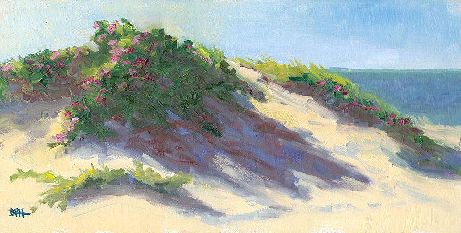Cape Cod Photograph - Dune Roses by Barbara Hageman