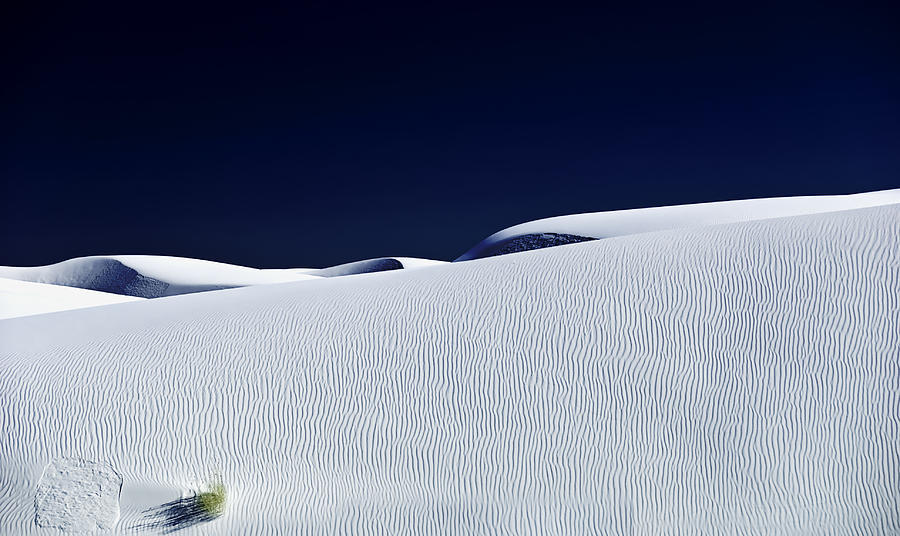 White Sands Photograph - Dunes And Yucca Three by Paul Basile