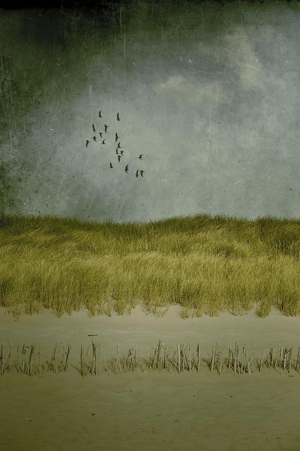 Dune Photograph - Dunes by Joana Kruse