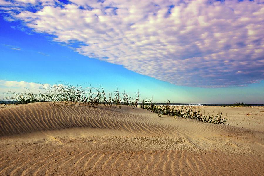 Dunes by John Harding