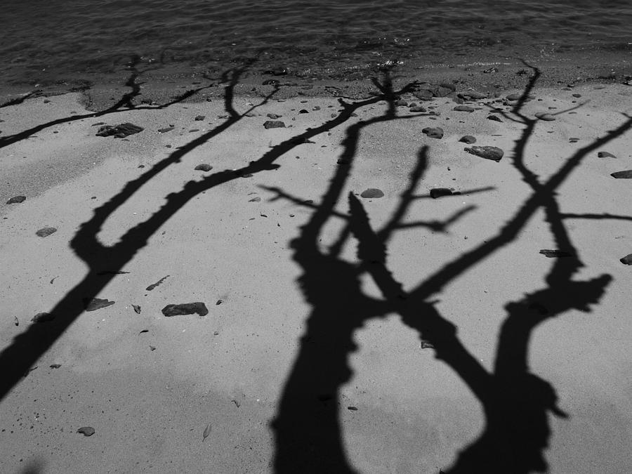 Shadows Photograph - Dunk Island Australia 174 by Per Lidvall