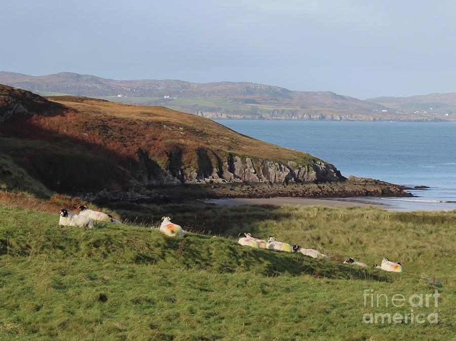 Dunree Coast Donegal Ireland by Eddie Barron