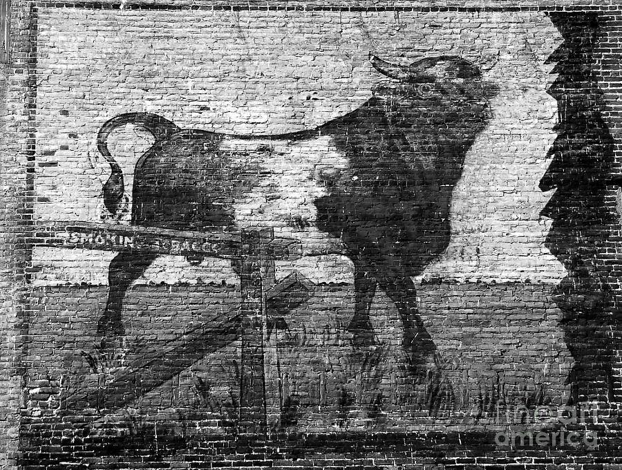 Bull Durham Photograph - Durhams Bull by David Lee Thompson