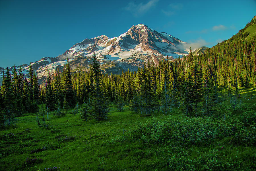 Dusk at Indian Henry Campground by Doug Scrima