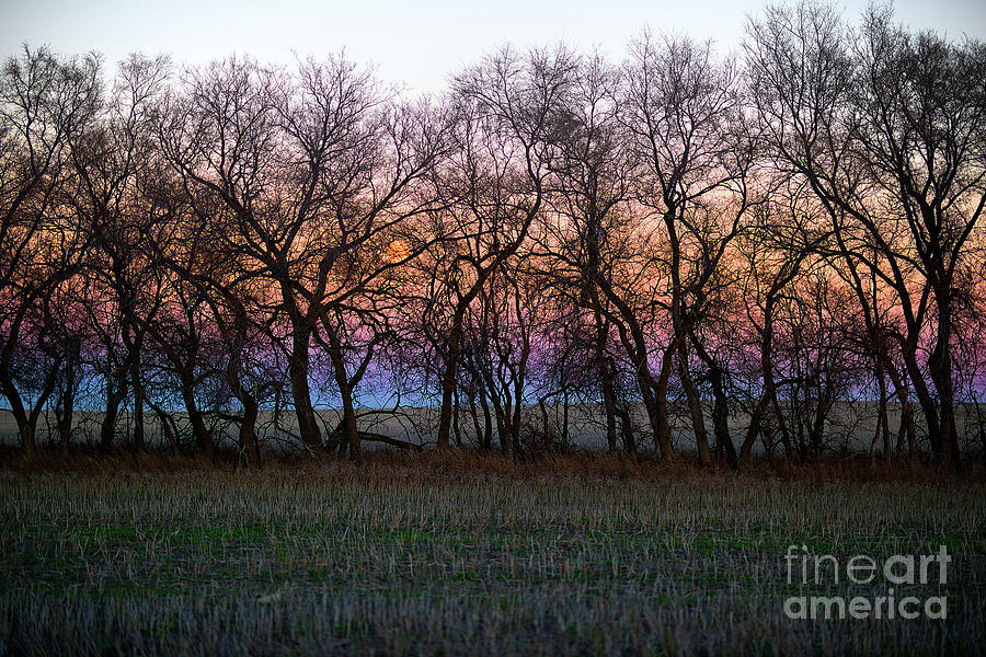 Canada Photograph - Dusk Hues by Ian McGregor