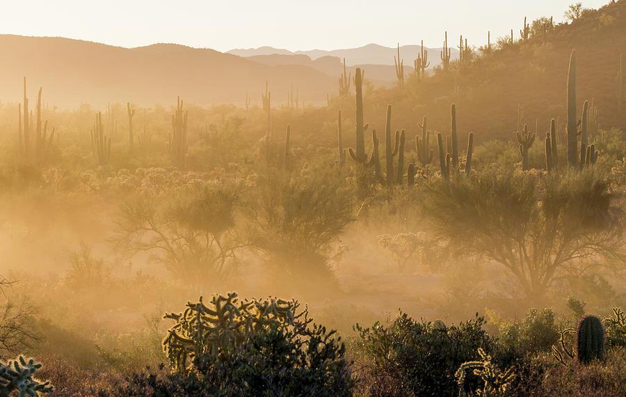 Dust Photograph - Dust Storm In The Desert by Trish VanHousen