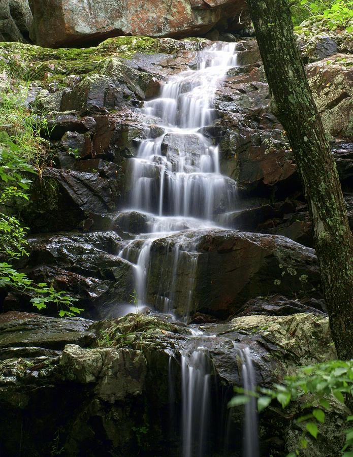 Waterfalls Photograph - E Falls by Marty Koch