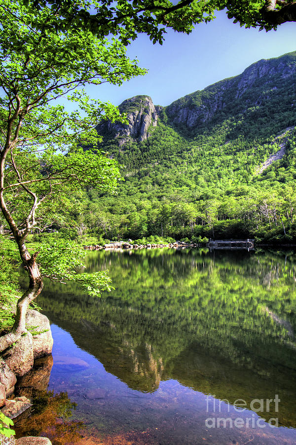 Franconia Notch Photograph - Eagle cliff by Diana Nault