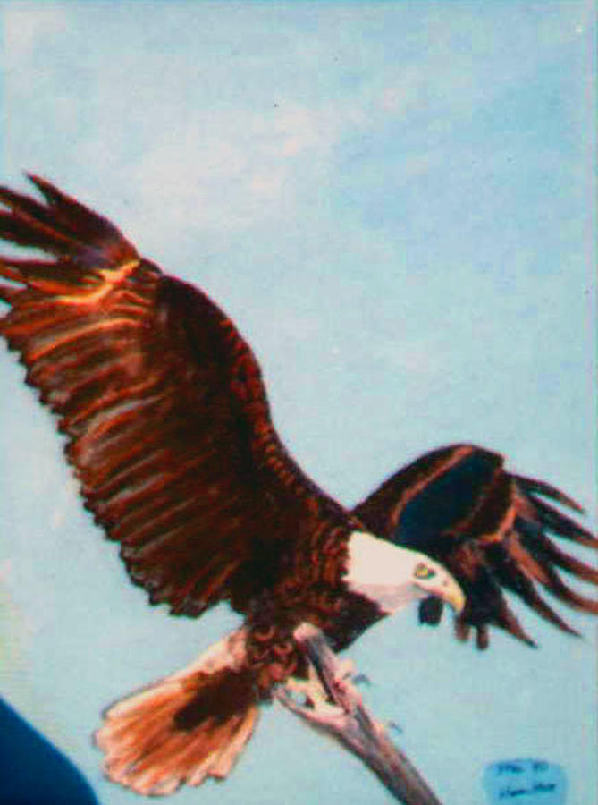 Eagel Painting - Eagle For Flight by Stan Hamilton