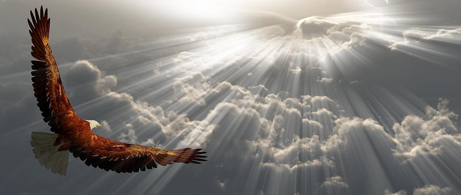 Eagle Digital Art - Eagle In Flight Above The Clouds by Bruce Rolff