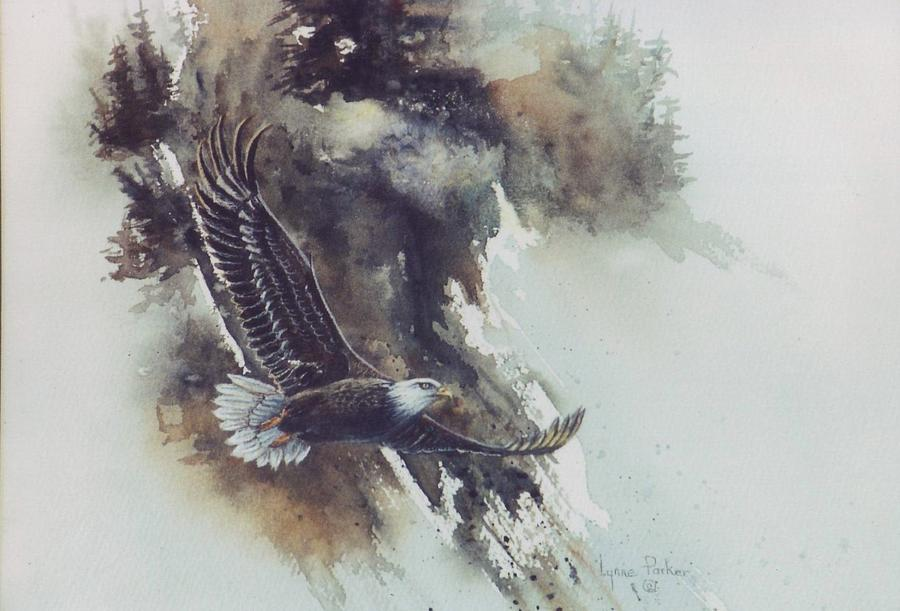 Eagle Painting - Eagle In Flight by Lynne Parker
