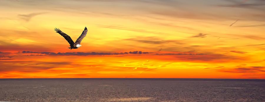 Eagle Panorama Sunset Photograph