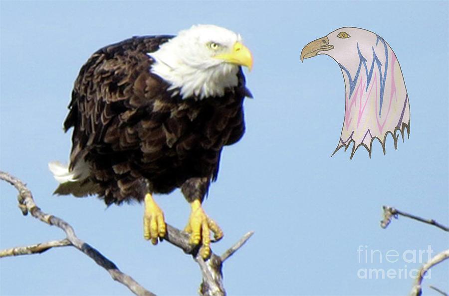 Bald Eagle Mixed Media - Eagle Reflection by Mary Mikawoz