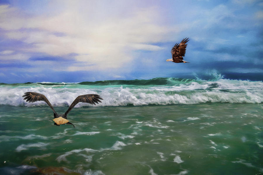 Jai Johnson Photograph - Eagles At Sea Wildlife Art by Jai Johnson
