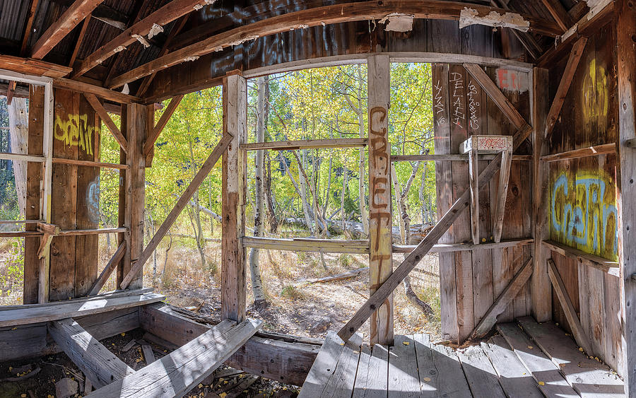 Early Autumn Foliage Outside Dilapidated Shack Between Lake Tahoe And Truckee, California Photograph