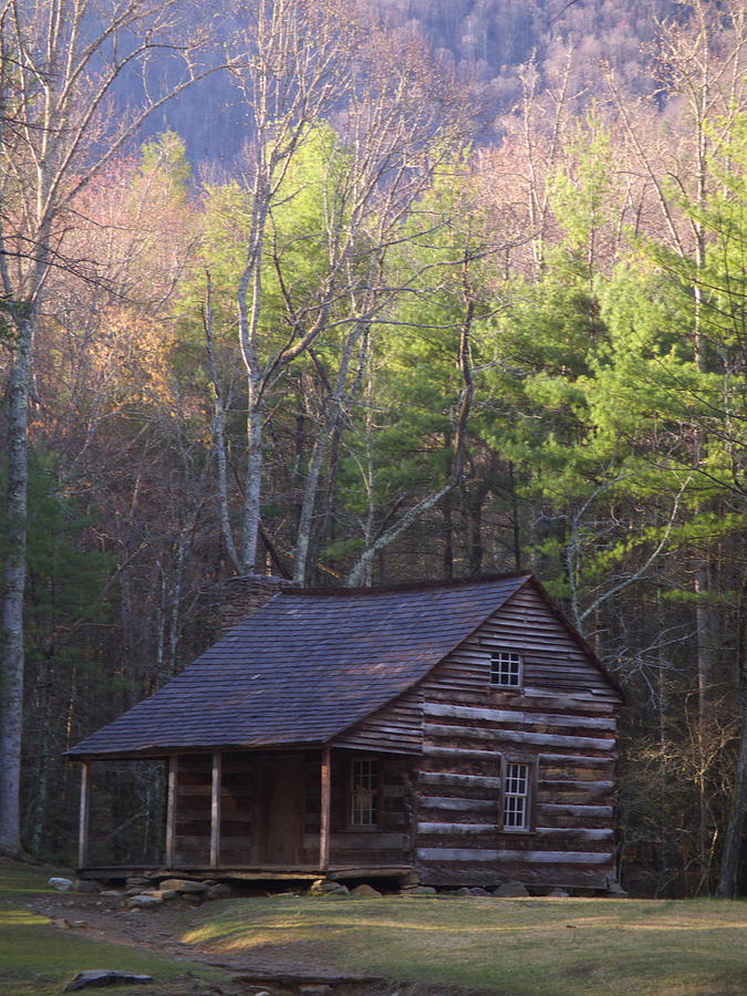 Scenic Photograph - Early Cove Homestead by Wayne Skeen