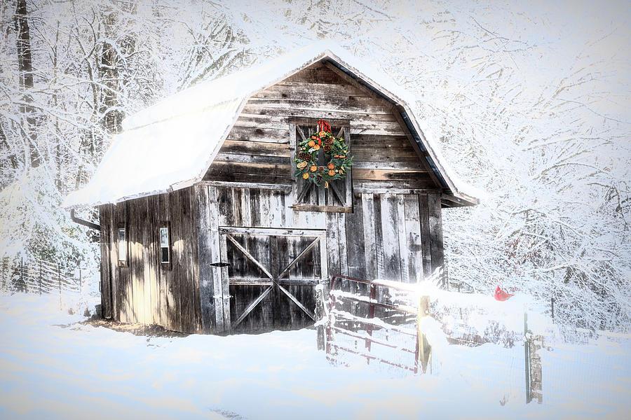 Appalachia Photograph - Early December Snowfall Morning by Debra and Dave Vanderlaan