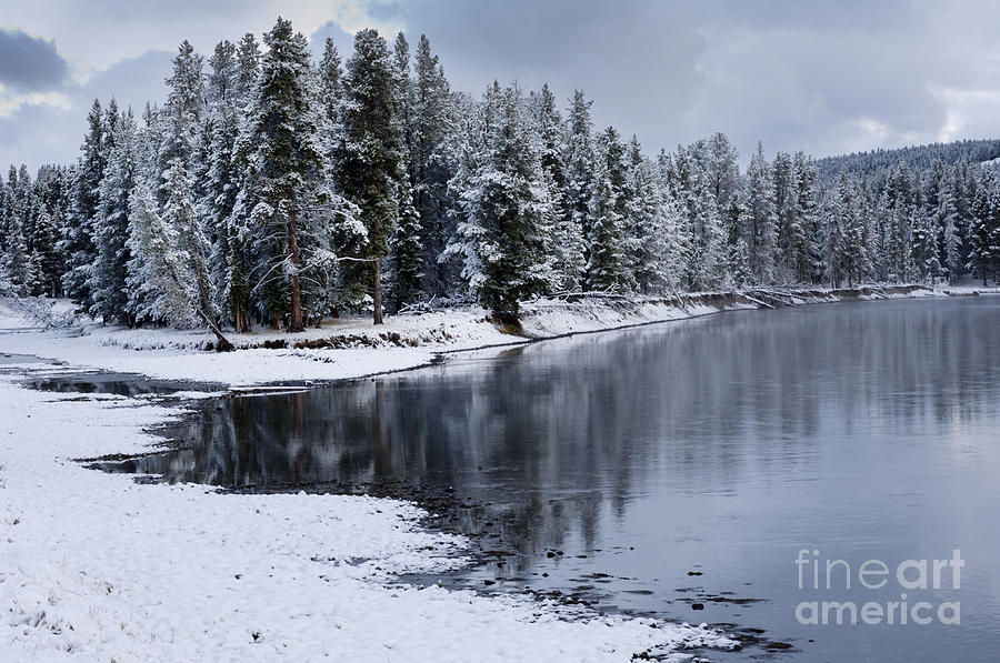 Yellowstone Photograph - Early Fall Storm In Yellowstone by Sandra Bronstein