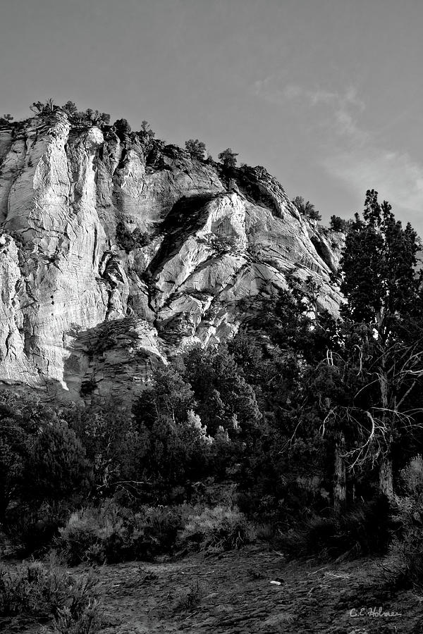 Zion Photograph - Early Morining Zion B-w by Christopher Holmes