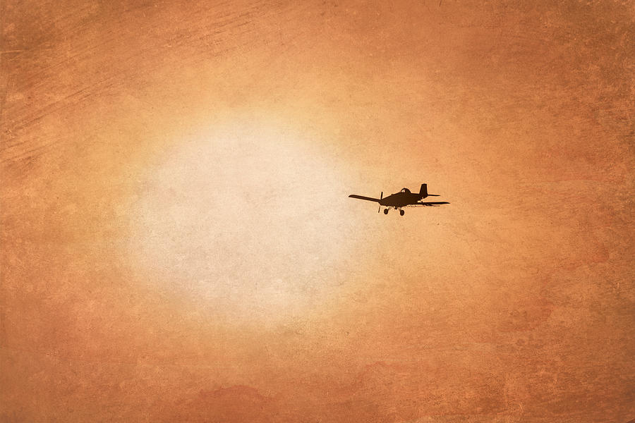 Airplane Photograph - Early Morning Flight by Ramona Murdock